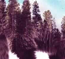 Forest Bear Sticker