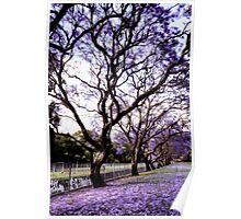 ~ purple rain ~ Poster