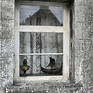 Lerwick (3) ...Window into the Lodberrie by Larry Davis