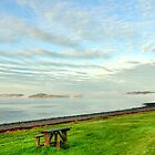 Moray Firth  by Steve