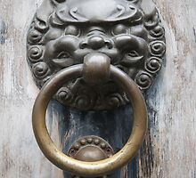 Lion Knocker by Robin  Szala