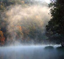 Rising Mist by Carolyn  Fletcher
