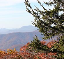 Blue Ridge Parkway Senic Views by JeffeeArt4u