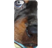 Young Female Rottweiler Making Eye Contact iPhone Case/Skin