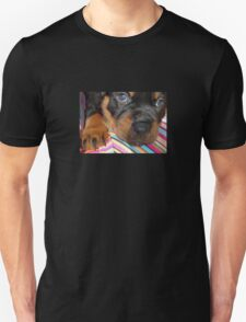 Young Female Rottweiler Making Eye Contact Unisex T-Shirt
