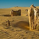 Pinnacles Two by Werner Padarin