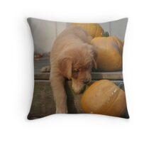 Amelia - Pumpkin Fall Down Go Boom Throw Pillow