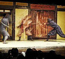 Ninjas in Action by Lucinda Walter