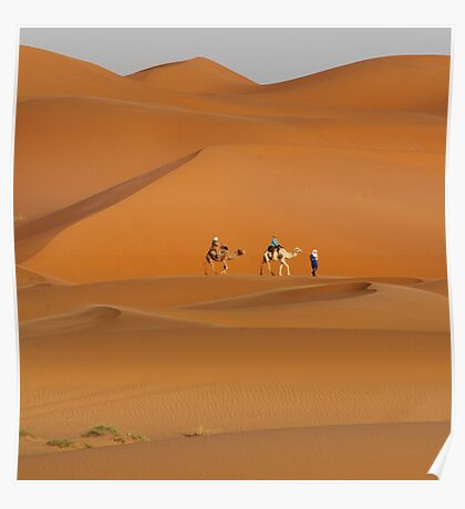 Dunes and Camels, Sahara Desert Morocco Poster