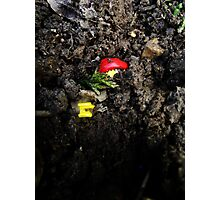 Lego Man Buried Alive Photographic Print