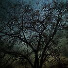 Skeleton Tree by SueMydliak
