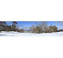 August snow scene Photographic Print