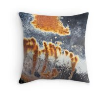 Patina Wall Art Throw Pillow