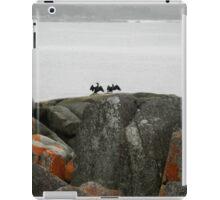 Great Cormorants drying their wings, Binalong Bay, Tasmania, Australia. iPad Case/Skin