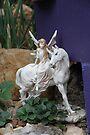 Her Unicorn by aussiebushstick