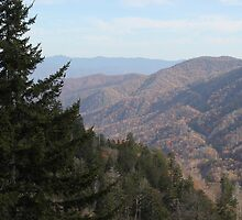 Appalachian Mountains / Blue Ridge Parkway by JeffeeArt4u