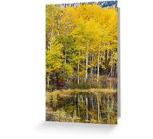 Beaver Pond Reflections Greeting Card