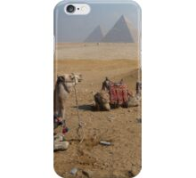Camels & Pyramids iPhone Case/Skin