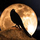 Crow In The Moon by George Lenz