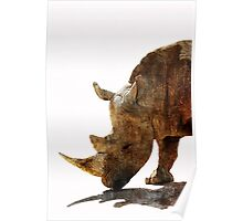 The Old Rhino Poster