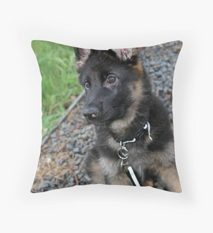 Alert and ready for fun Throw Pillow