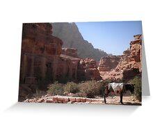 Desert in Jordan Greeting Card