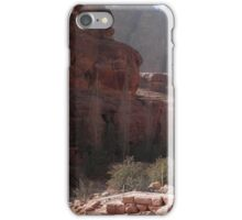 Desert in Jordan iPhone Case/Skin