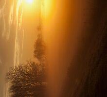 Foggy Sunrise iPad by KBritt