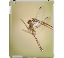 Dragonfly iPad iPad Case/Skin