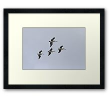 The Squadron Framed Print