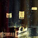 The Iron Bar by Vanessa Barklay