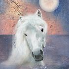 The White Horse Went Swimming by Carien