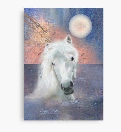 The White Horse Went Swimming Canvas Print