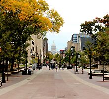 State Street in Madison, Wisconsin by Meredith Johnson