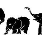 baby elephants by Matt Mawson