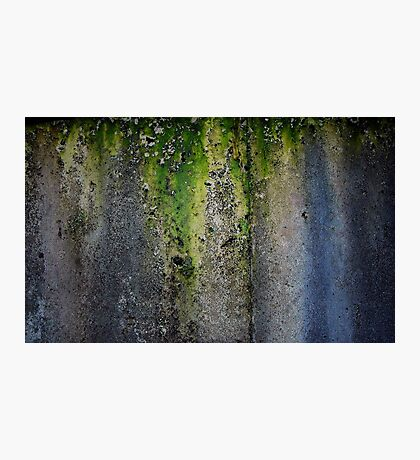Moldy, Lichen Coverd Water Tank Photographic Print