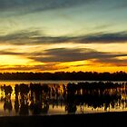 MANGROVE SUNSET AT TOORADIN by Matthew Burniston