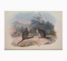 A monograph of the Macropodidæ or family of kangaroos John Gould 1842 021 Halmaturus Thetidis Kids Tee