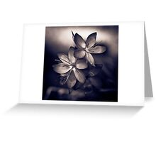 Even in a black and white world, colour can speak volumes Greeting Card