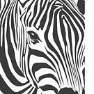 zibra print by ioanna1987