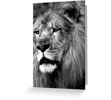 Like Thunder From The Sky....Sworn To Fight And Die...We're Warriors....Warriors Of The World... Greeting Card