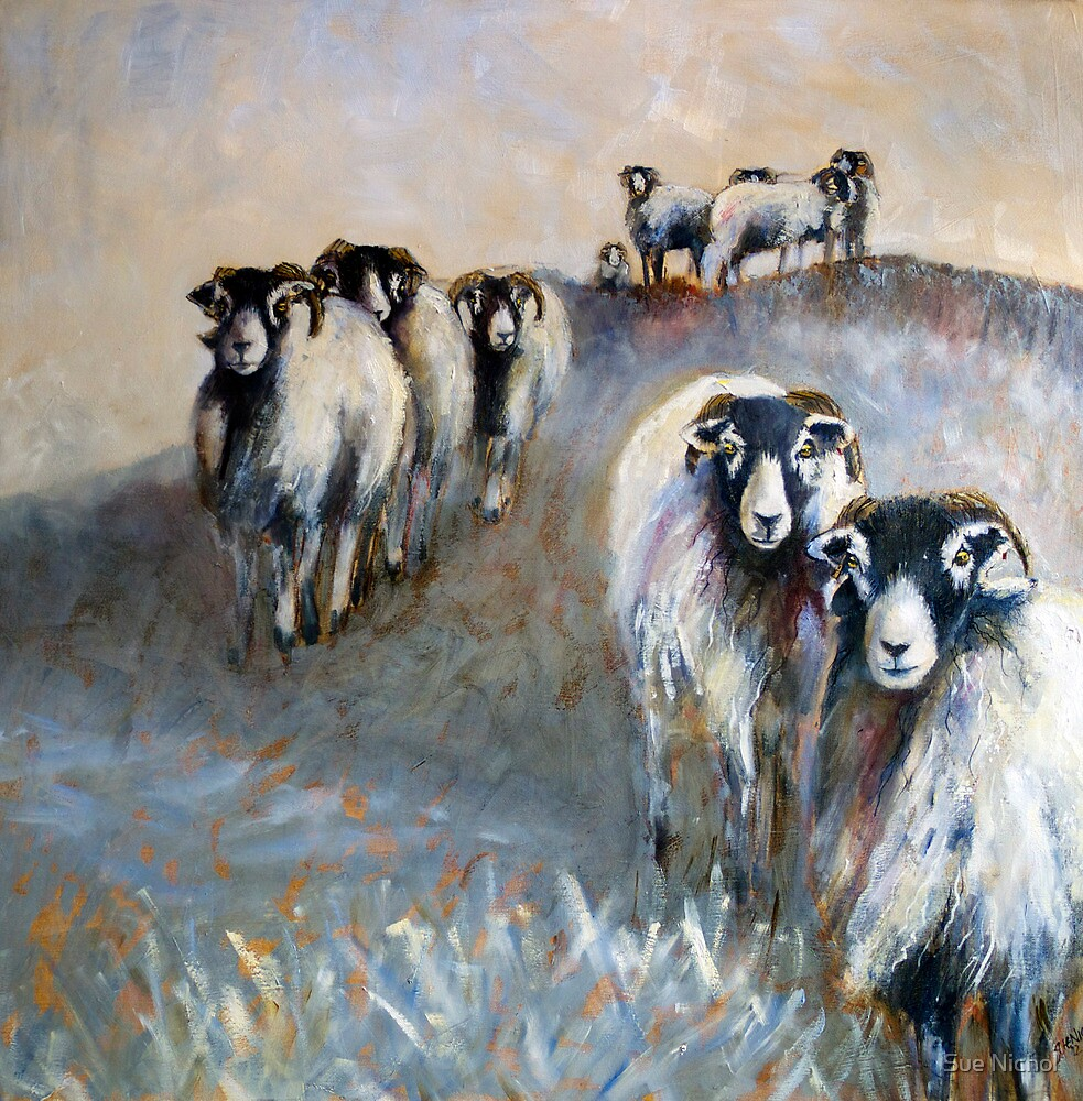 Swaledale Winter by Sue Nichol