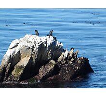 Serenity at Sea Photographic Print