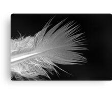 Monochrome Feather Canvas Print