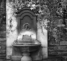 Dry Fountain by BH Neely