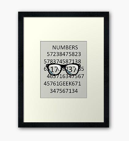 NUMBERS GEEK Framed Print