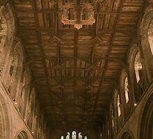St Davids Cathedral, Pembrokeshire by itchingink