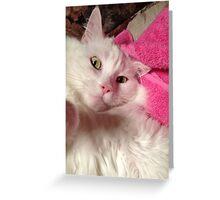 I Love You Sugar Greeting Card