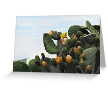 Greek Island Orange Cactus Greeting Card