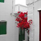 Greek Island street and flowers by SlavicaB